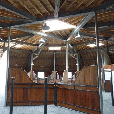 Equestrian Project